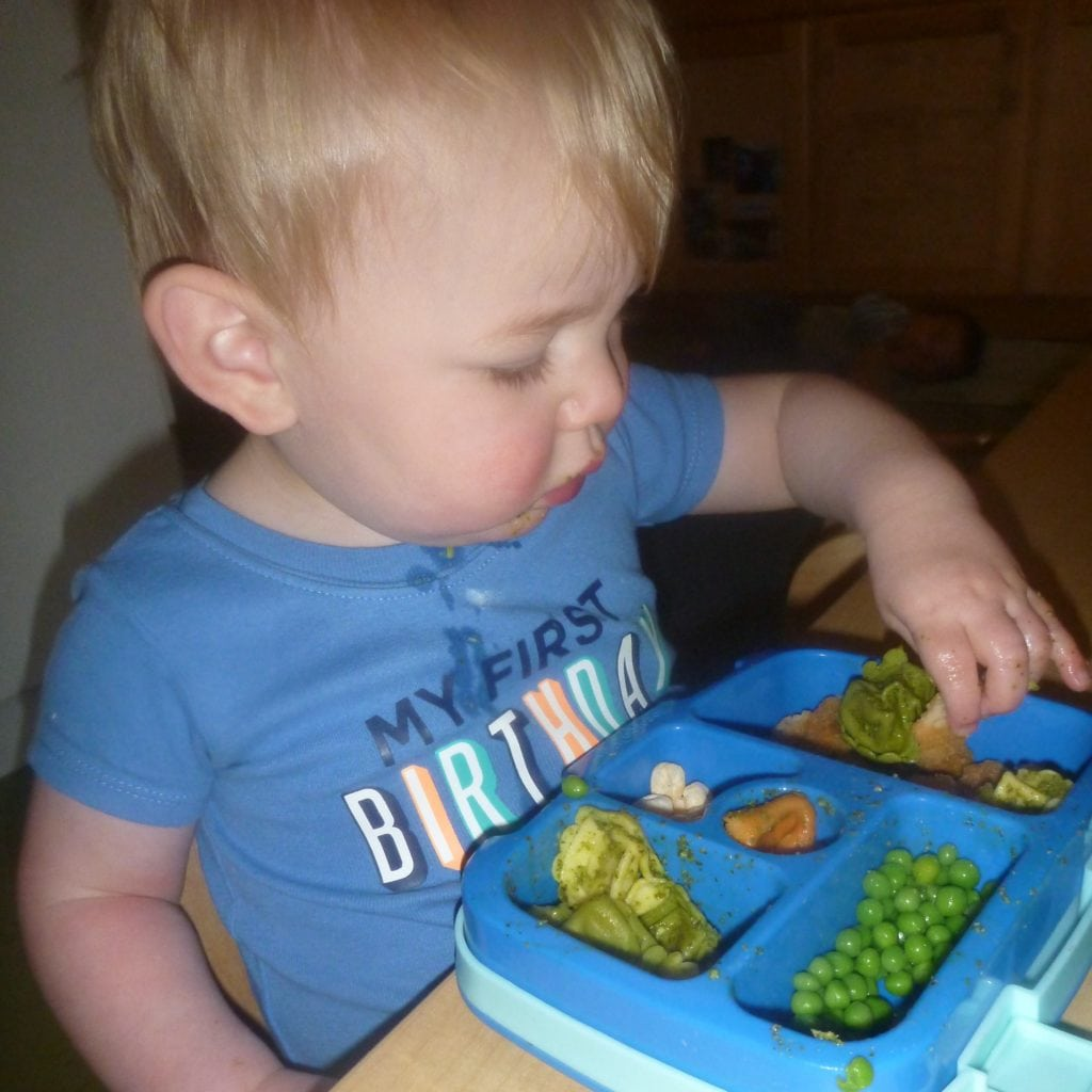3 - sq -Healthy eating in the toddler years