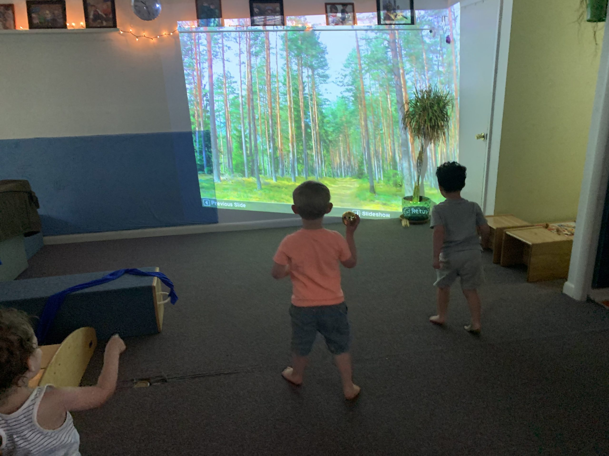 Toddlers playing in their classroom, balls, projector, tree image, light, space, Reggio inspired